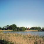 countryside pond