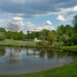 pond in Spreeauenpark